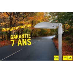 CANDELABRE LED COUPOLE-60W-BLANC NEUTRE